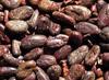 Organic De-Shelled Cacao Beans